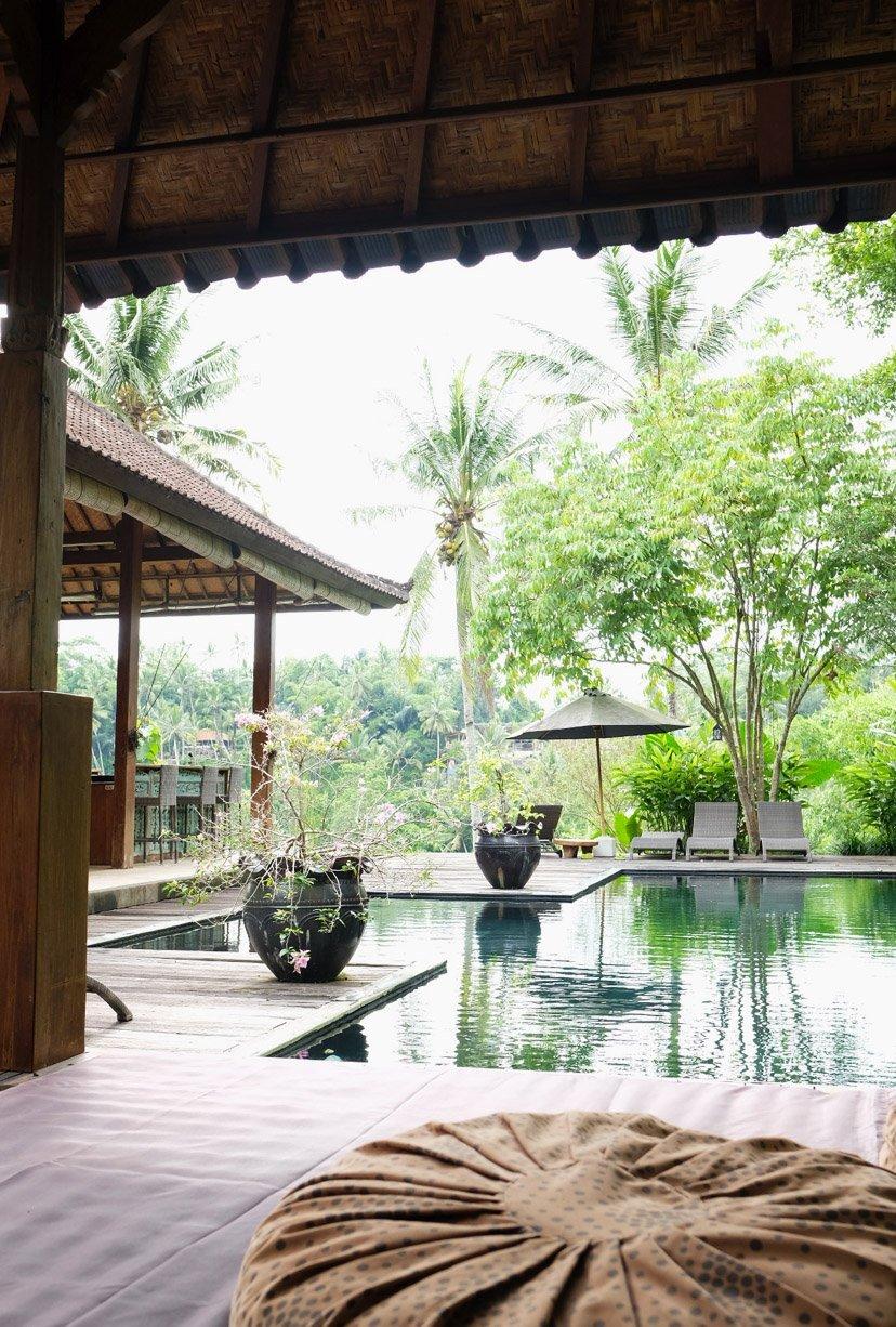 vista piscina y jardín