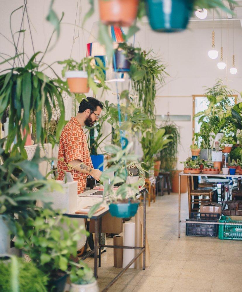 chico entre plantas