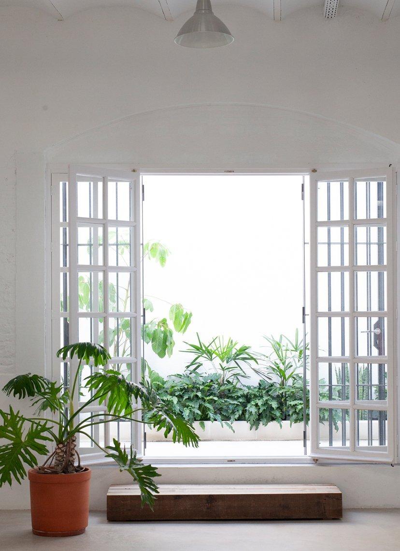interiorismo con plantas
