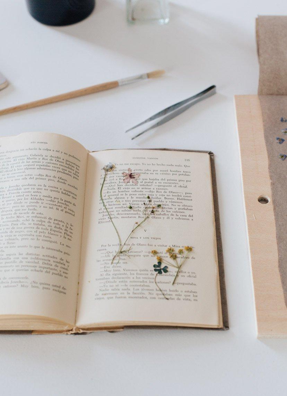 libro con flores prensadas